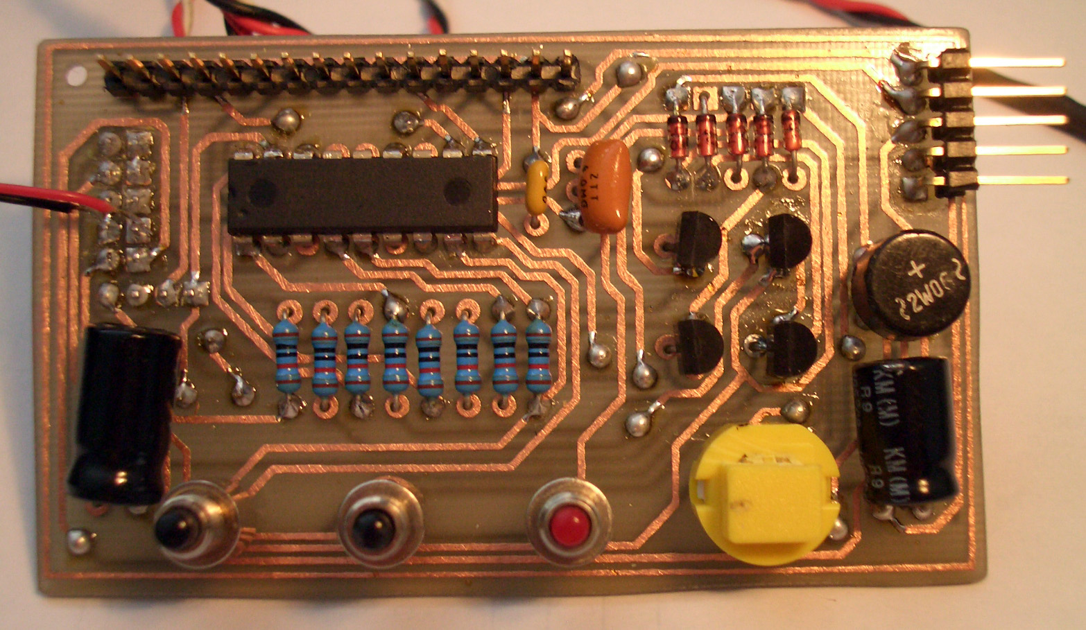 Circuit Domain Projects